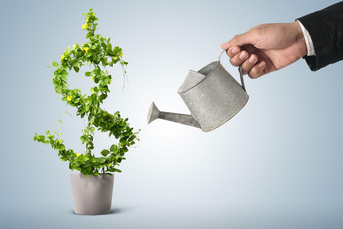 Investment Management Image